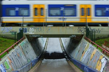 Trein op een viaduct van Michel van Kooten
