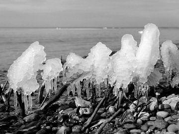 Eis am Stiel – Darß Weststrand im Winter 2018 von Jörg Hausmann