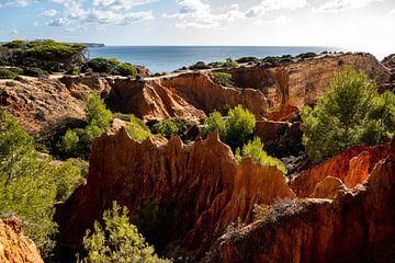 De rode rotsen en de oceaan in Portugal van elma maaskant