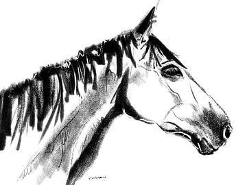Pferdeporträt Sanne von Go van Kampen