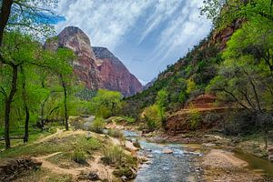 rivier in Zion National Park, Amerika
