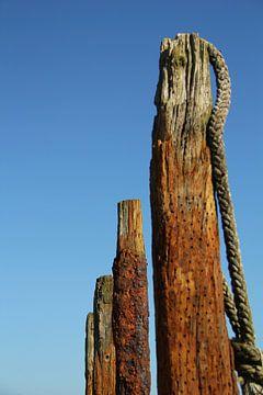 Oud hout van Marieke Borst