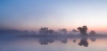 Strabrechtse Heide 210 von Desh amer