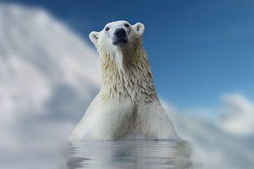 Eisbär Nr. 2 von Lars van de Goor