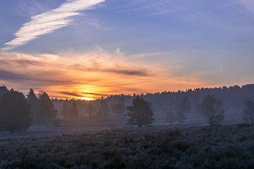 s Morgens op de heide van Dieter Rabenstein