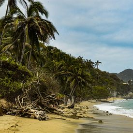 Caribisch paradijs Tayrona van Zoe Vondenhoff