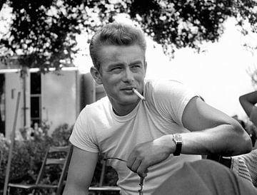 James Dean, 1955 van Bridgeman Images