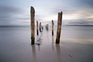 Holzstangen am Strand