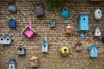 Vogelhäuser von Dick Carlier