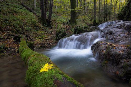 Wonderful waterfalls van René Pronk