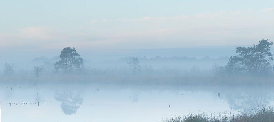 Mist in de vroege ochtend over het water