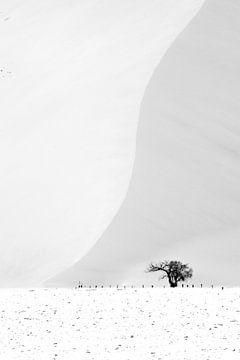 Sossusvlei zandduin von Jeroen Kleverwal