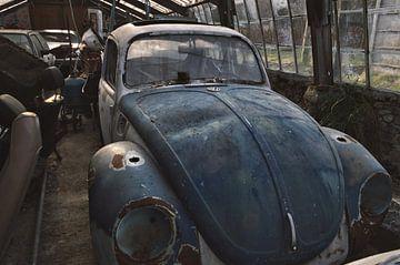 volkswagen beetle van romario rondelez