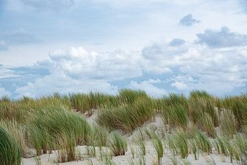 Duinen - Texel van Joop Bruurs