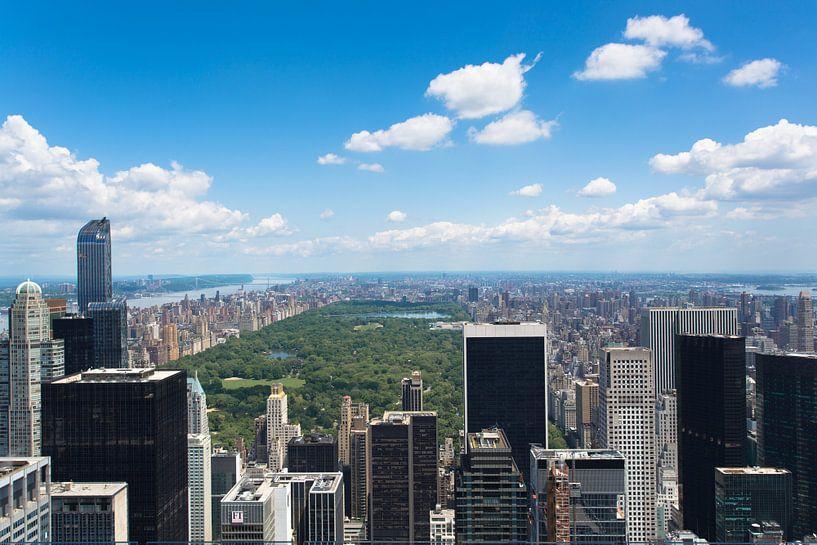 Uitzicht over Central Park, New York van Capture the Light