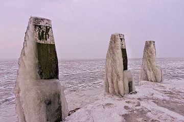IJsselmeer dichtbevroren van Leon Eikenaar