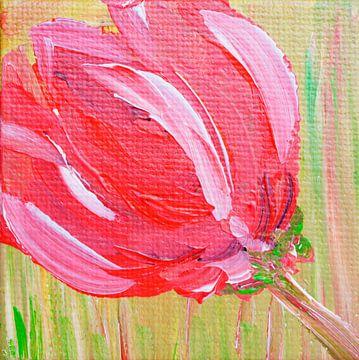 Rode Tulp van Angelique van 't Riet