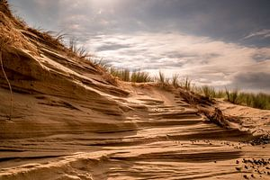 Duinen bij Katwijk aan Zee, Nederland van