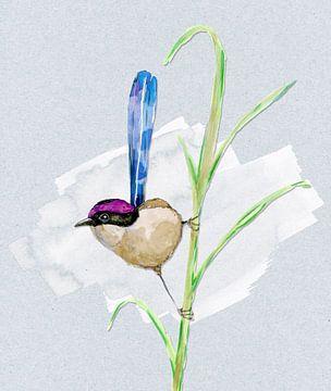 Een aquarel tekening van een purperkruinelfje van Bianca Wisseloo