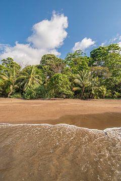 Paradiesischer Strand von Costa Rica von Bianca Kramer