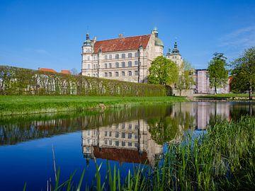 Gezicht op kasteel Güstrow in Mecklenburg-Vorpommern van Animaflora PicsStock