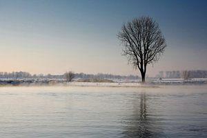 Mist over de rivier op winterse dag