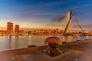 Bolderclose-up met cityscape van Rotterdam en de Erasmusbrug op de achtergrond van Gea Gaetani d'Aragona