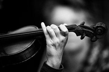 Violin von