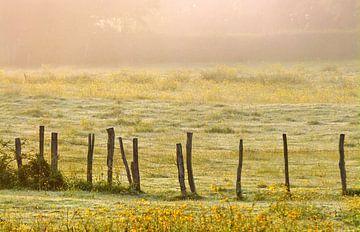 Gute Morgen, Frankreich... von Caroline Lichthart