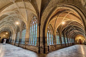 Kloostergang Sint-Pauluskathedraal Luik sur Dennis van de Water