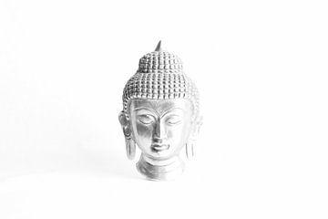 buddha van sarp demirel