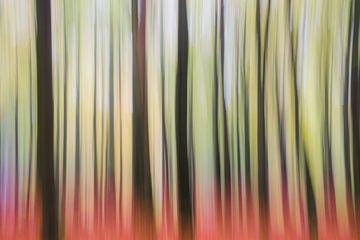 Forest Trip von Coen Weesjes