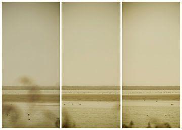 lauwersmeer triptychon 24 von anne droogsma