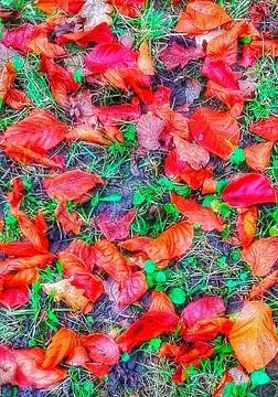 Herbstliche Herrlichkeit
