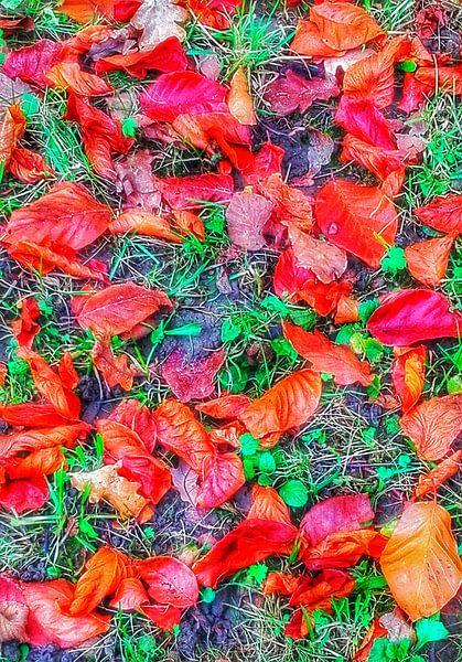 Herbstliche Herrlichkeit von mimulux patricia no