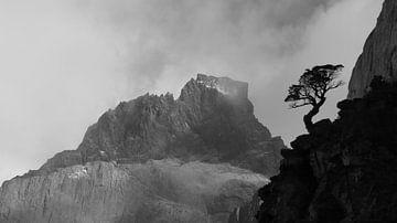 Cuernos del Paine von Heike und Hagen Engelmann