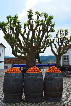 Orangen in Portugal von Vera Cerutti