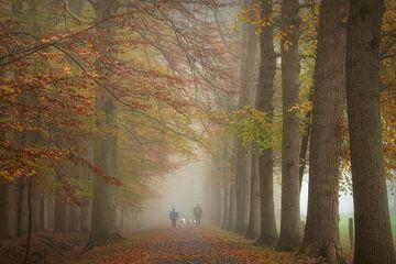 Herbstlicher Spaziergang von Francis Dost
