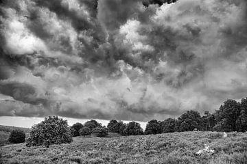 Wolken über der Veluwe von joas wilzing