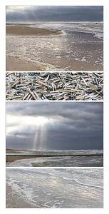 Een bijzondere collage van het Nederlandse strand van Willy Sybesma