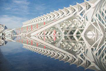Spiegel der wetenschap 4 van Mark Leek