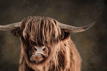 Portret van  Schotse Hooglander met achtergrond van waterverf van KB Design & Photography (Karen Brouwer)