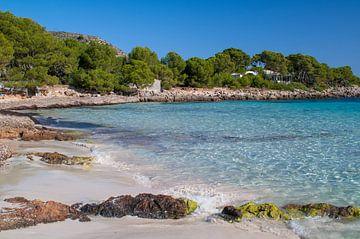 Bosrijk strandgedeelte bij Cala Agulla met turquoise water en blauwe lucht van Hans-Heinrich Runge