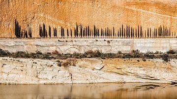 Rij van cypressen tegen een oranje rotsachtige achtergrond van Wout Kok