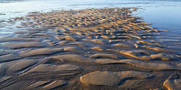 Sandrippeln im flachen Nordseewasser von Bodo Balzer