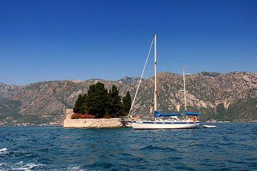 Baai van Kotor, Montenegro van Sven van Rooijen