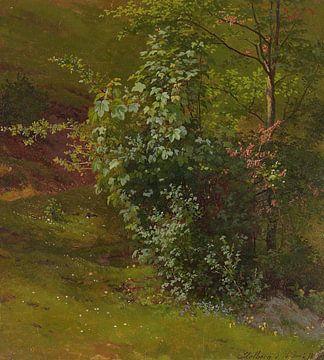 Adrian Ludwig Richter-Studie über Bäume