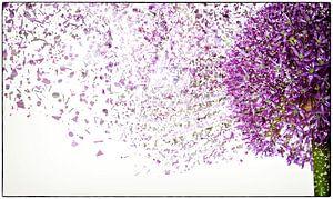 Flower Power #2 von