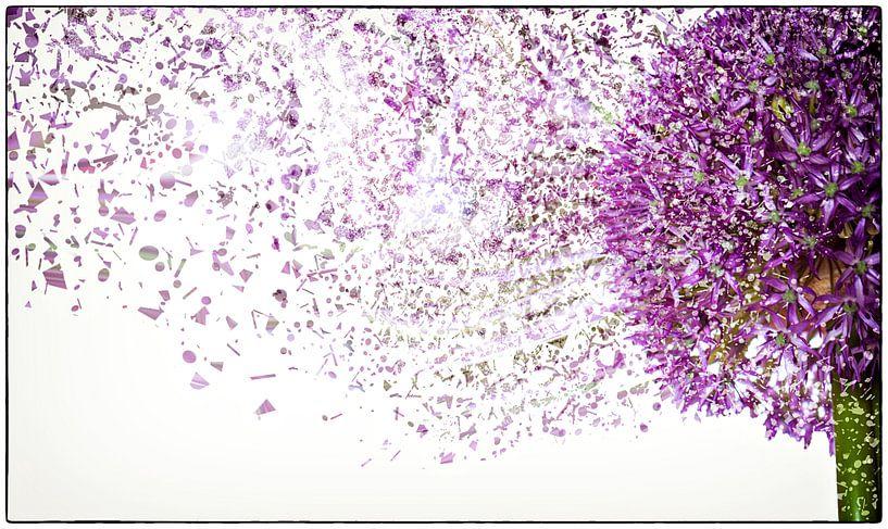 Flower Power #2 van Cristel Brouwer