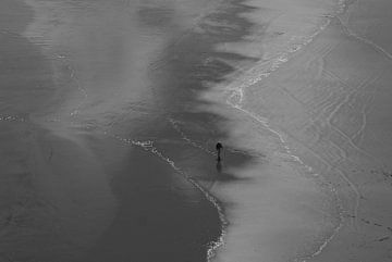 Neuseeland - Tidal Walking von Maurice Weststrate